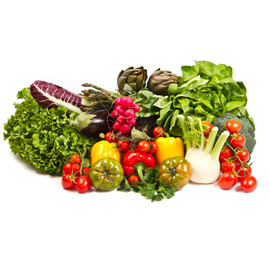 Adore Your Healthy Diet during Medical Weight Loss