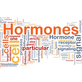 Understanding Hormone Imbalance